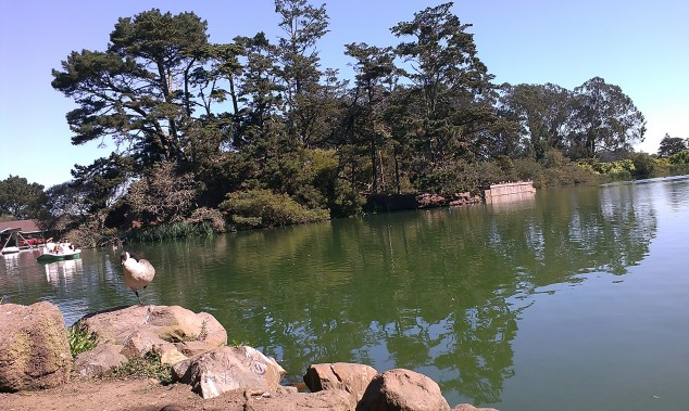 golden_gate_park_lake